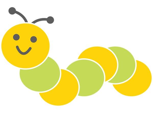 虫を食べる!蚕のさなぎを食べてみる。