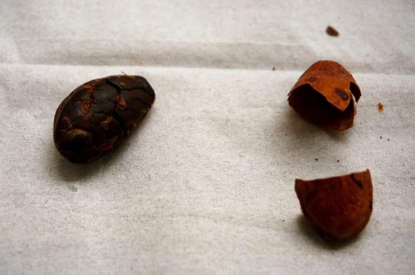 カカオ豆チョコ作り方16