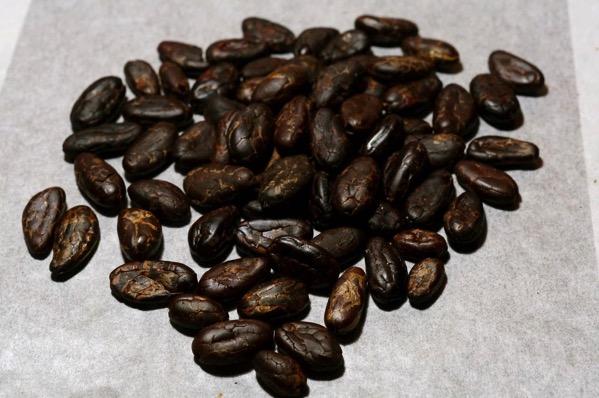 カカオ豆チョコ作り方19