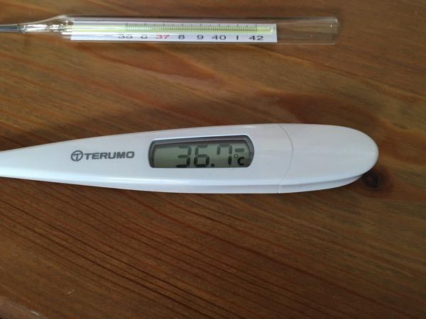 テルモ体温計09