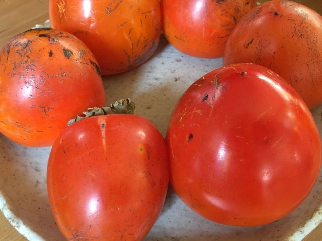 熟れた渋柿