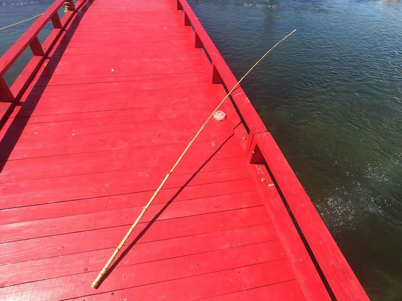 手ぶらで太海フラワー磯釣りセンター2