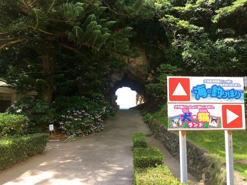 太海磯釣りセンター洞窟