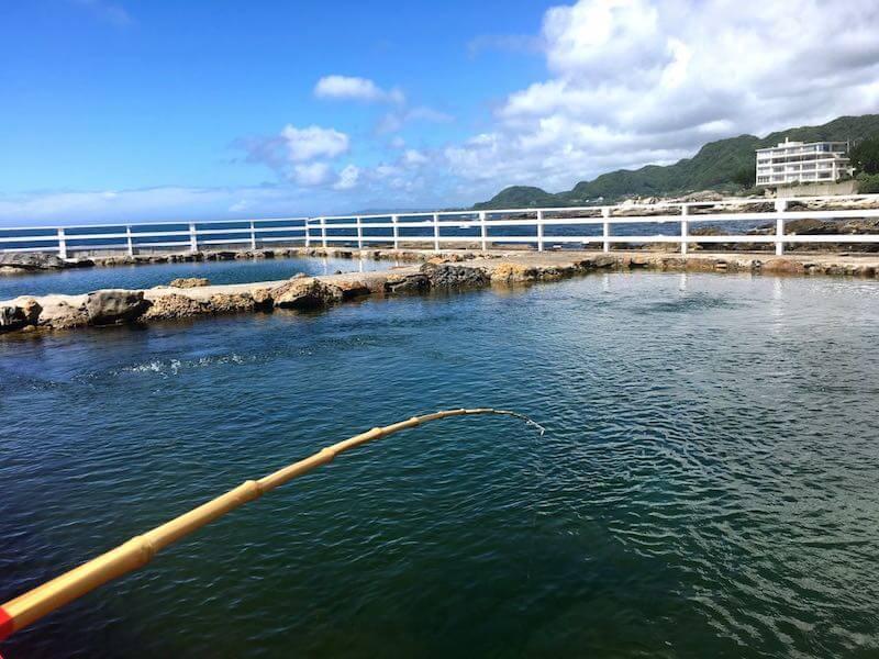 太海磯釣りセンター釣り始め
