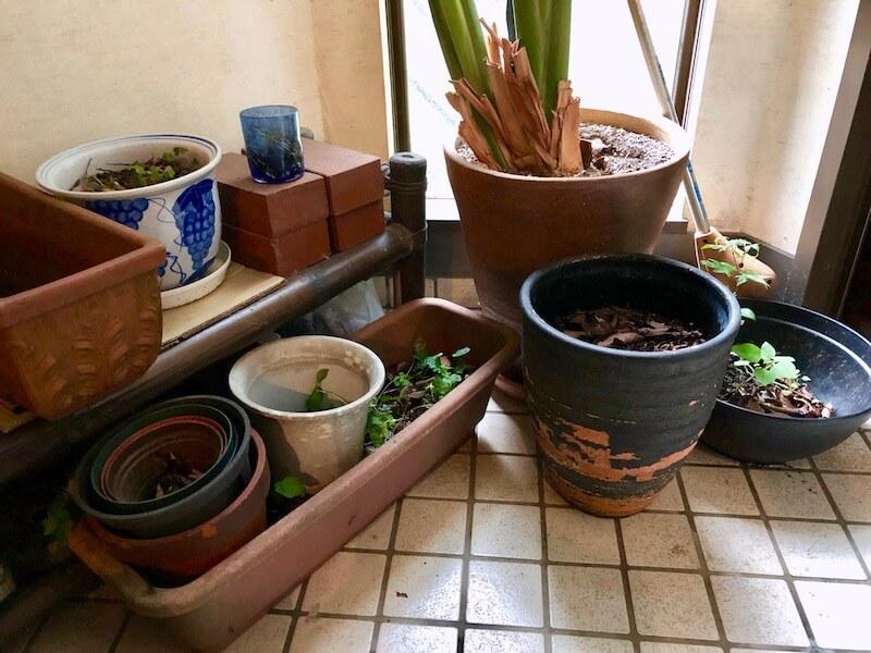 台風の準備と対策4